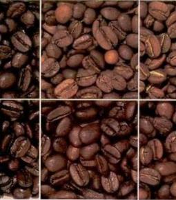 Особливості обсмажування кави в ростері