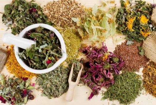 Домашня аптечка: натуральні настоянки