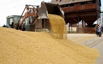 Процес і способи сушіння зерна