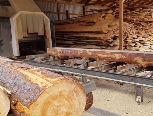 Стрічкові пилорамні верстати: найкраще обладнання для розпилу деревини