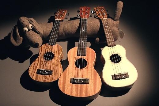 Гавайська гітара укулеле: особливості музичного інструменту