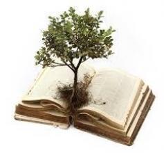 Зроби добру справу - врятуй дерево: замов вивіз макулатури з офісучи дому!