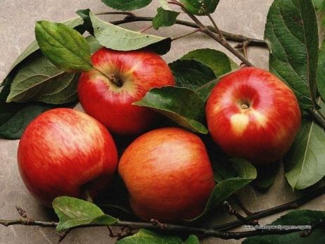 Яблука оптом купити - здоров'я собі забезпечити