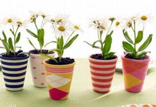 Купить горшки для цветов