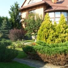 Креативное озеленение двора частного дома за умеренную цену!