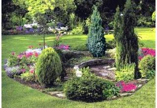 Купить деревья и кустарники по выгодной цене