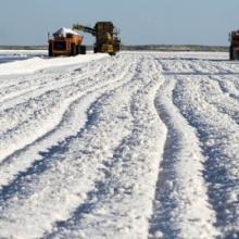 Купуйте ефективну сіль для промислової переробки за низькою ціною!