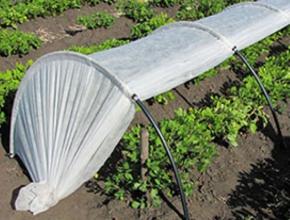 Спешите купить мини-парник для рассады – повышайте урожайность на 30%