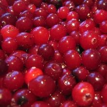 Пропонуємо заморожені фрукти (опт, роздріб)