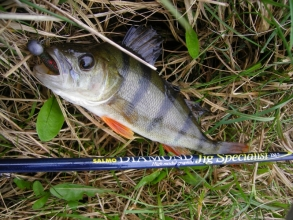 Рыболовная снасть в интернет-магазине «Carp Expert»