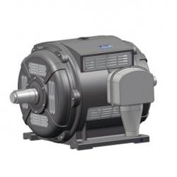 Электродвигатель асинхронный высоковольтный экскаваторный АЭ4