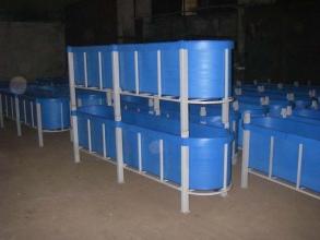 Купити обладнання для вирощування риби, ціна від 1700.00 грн