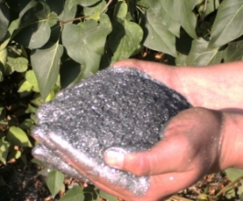Natural graphite - buy in Ltd.