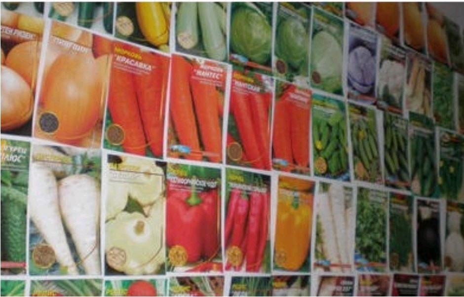 Пакування насіння. Картонна упаковка ціна