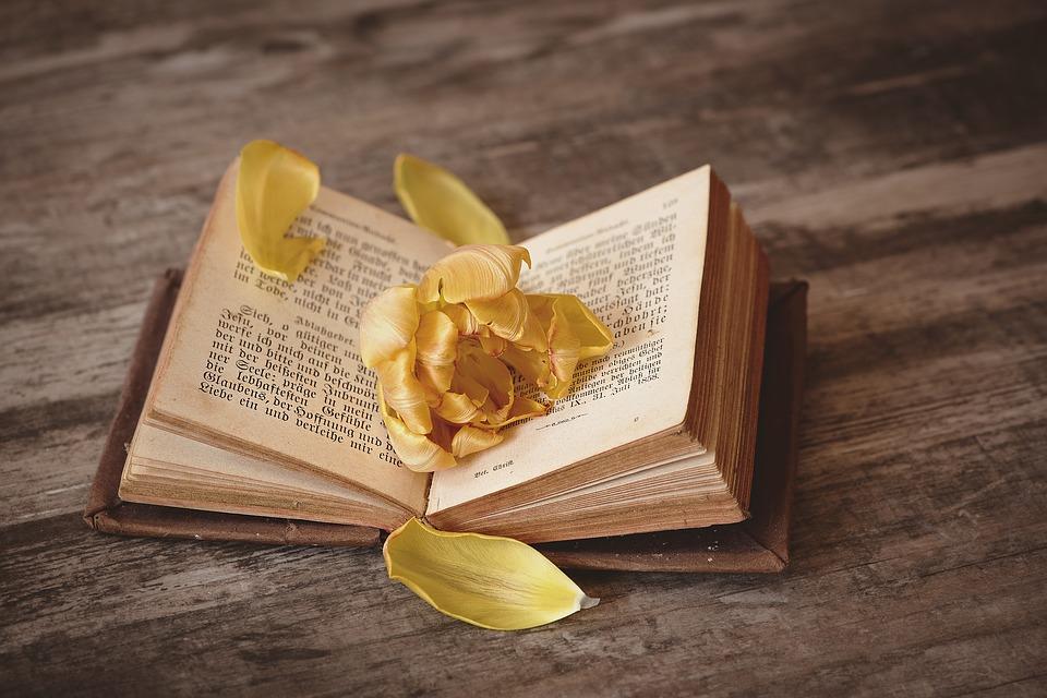 Збірки поезій Цвєтаєвої та Ахматової від майстерні