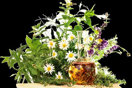 Свіжа натуральна рослинна косметика ТМ SWAN (Україна)
