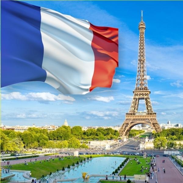 Експорт в Францію відA&P Communication