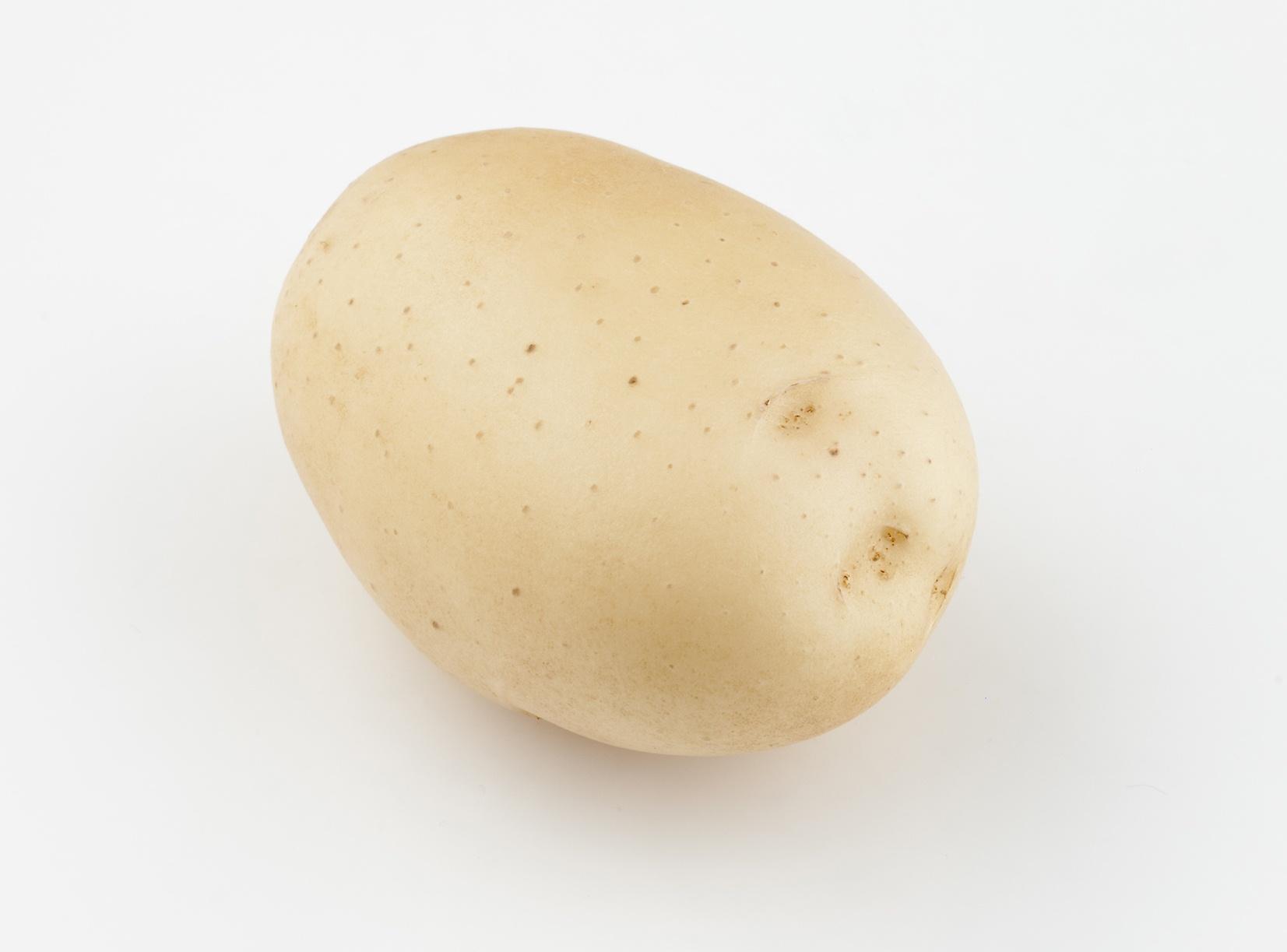 Элитные семена картофеля почтой быстро и недорого