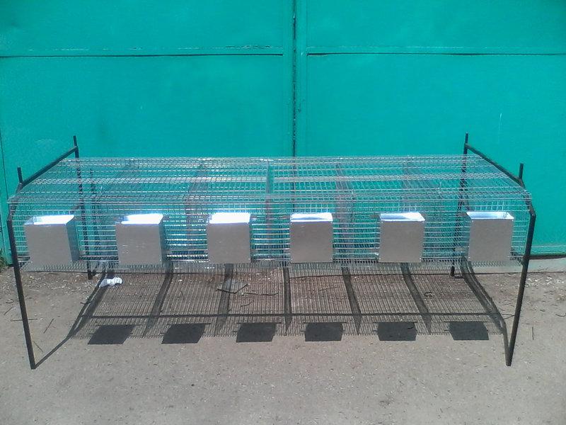 Відгодівельні клітки для кроликів купити