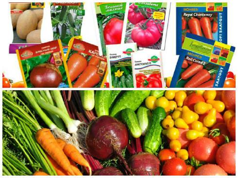 Пакетики для семян оптом по доступной цене