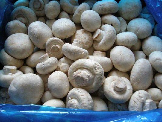 Заморозка белых грибовкупить недорого можно у нас!