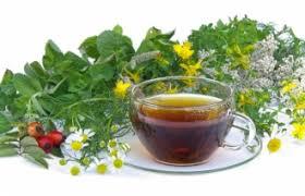 Травяные сборы оптом – только экологически чистое сырье