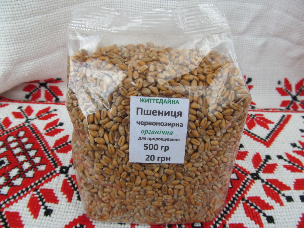 Цільнозернові крупи: екологічно чисте зерно для пророщування в домашніх умовах