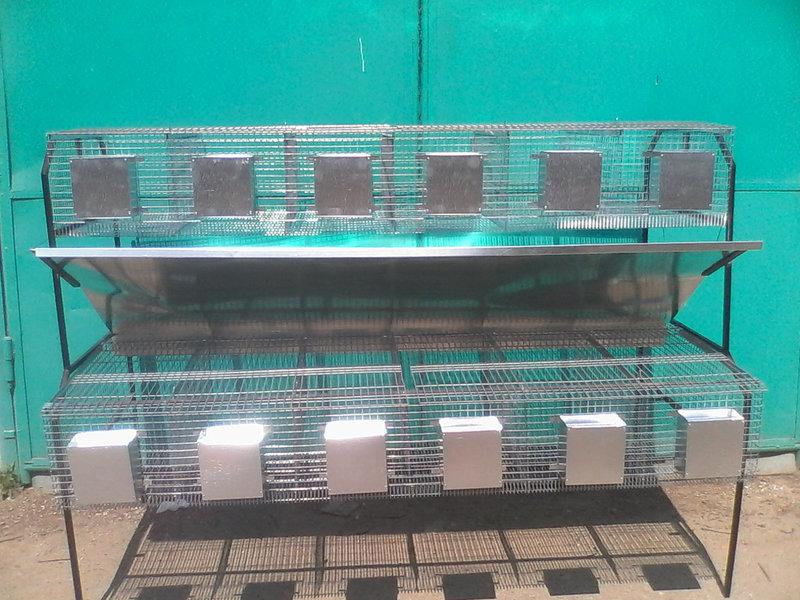 Реализуем качественные клетки для кролей