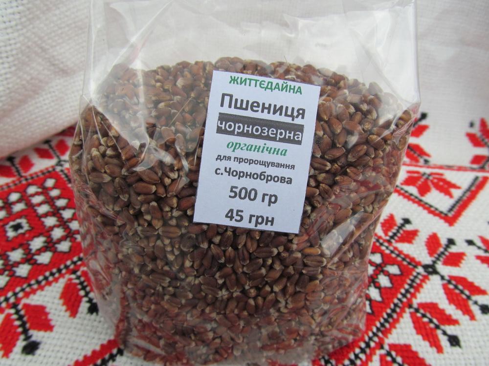 Пшеница чернозерная органическая покупайте у нас!