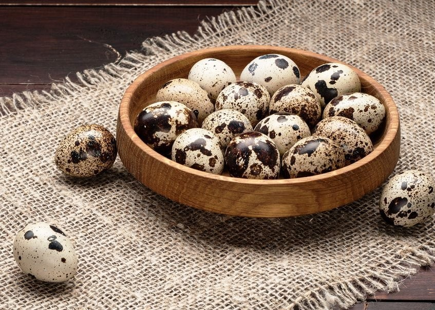 Советуем купить яйца перепелиные