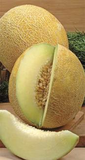 Різноманітне насіння дині доступне для замовлення