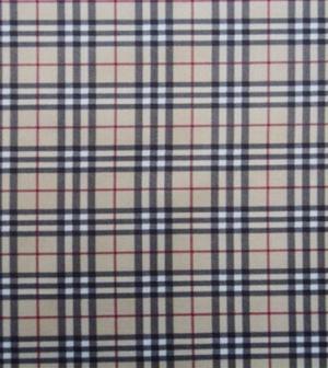 Курточна тканина Дюспо бондінг, купити в Україні