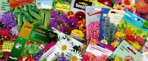 Пропонуємо купити пакети для насіння оптом
