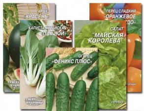 Шукаєте насіння овочів оптом для свого магазину?