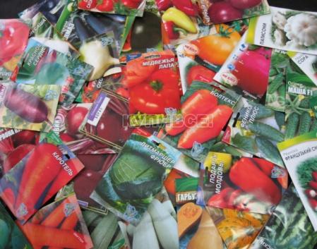 Предлагаем широчайший ассортимент семян овощей из России