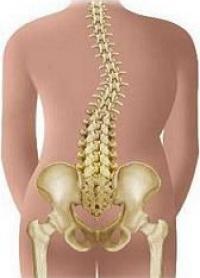 Безболісне лікування сколіозу: масаж, Луцьк!