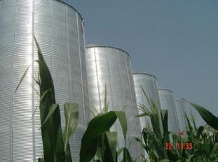 Большой выбор зерносушилок