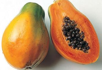 Предлагаем купить папайю у надежного поставщика