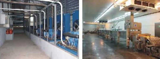 Виконуємо якісне та надійне будівництво холодильних камер