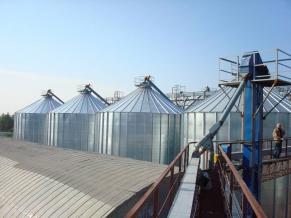 Зерносховища в Україні