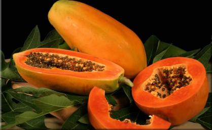 Пропонуємо купити папайю за доступними цінами