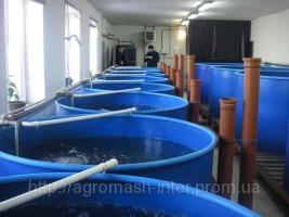 Продаємо обладнання для вирощування осетра в домашніх умовах