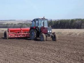 Актуально! Посев зерновых культур в Украине