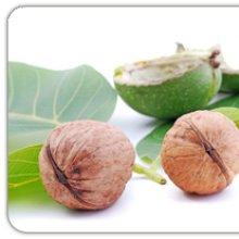Купуйте щеплені саджанці волоського горіха в нашому розпліднику!