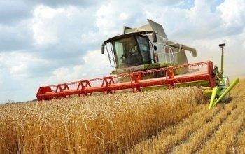 Соберём ваш урожай зерновых нашей техникой!