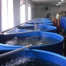 Басейни для рибництва від українського виробника