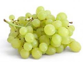 Нужно саженцы винограда купить почтой? С нами это просто!
