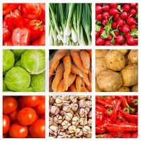 Семена овощей и цветов купить