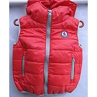 практичні та модні демісезонні куртки і жилети українського та турецького  виробництва (тканина - плащівка db7bd4322a290