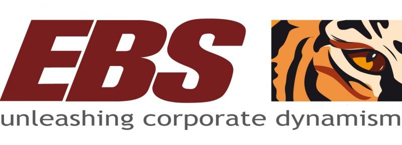 Консалтингові послуги, бухгалтерський консалтинг - EBS